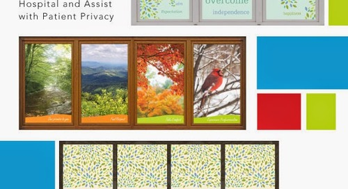 Enjoying the View: Window Graphic Samples