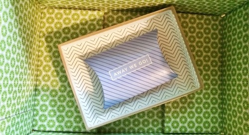 Pretty patterns in the mail today! @piperlime @birchbox #chevron...
