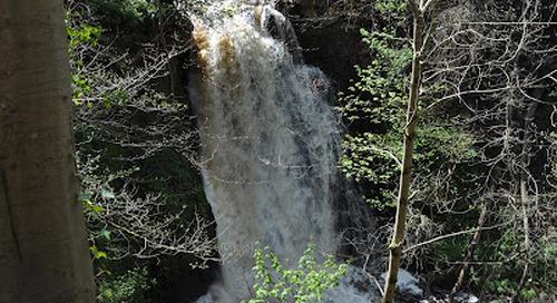 Falling Foss Waterfall and Tea Gardens