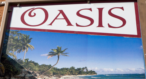 terrysdiary:  Oasis  Shot Jesse Jane here
