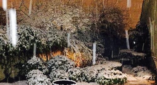 Snowing in Vegas this morning