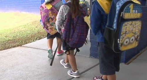 Students no longer required to use mesh bags