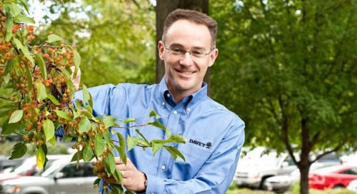 The Benefits of Hiring a Davey Certified Arborist