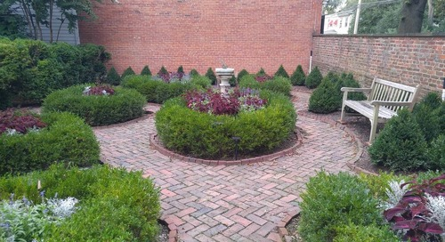 Landscape Design Idea for Privacy (Best Trees and Shrubs by Zone)