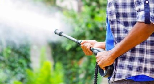Can I Use a Pressure Washer to Clean or Spray Trees?
