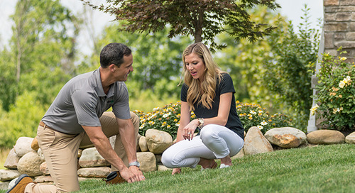 First-Time, New Homeowner's Guide To Lawn Care
