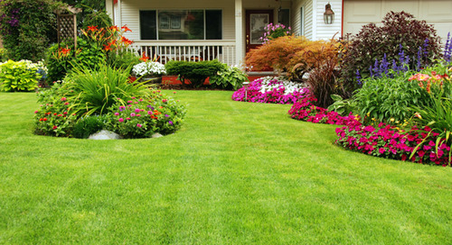 Landscaping Ideas To Make Your New Home Your Own