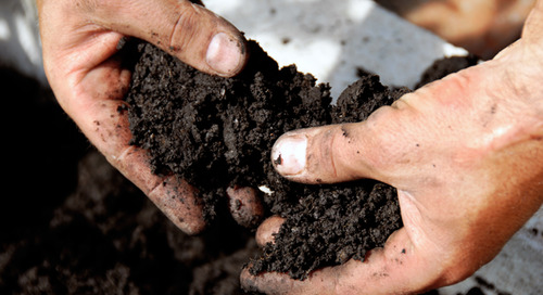 How to Make Good Garden Soil: A Step-by-Step Guide