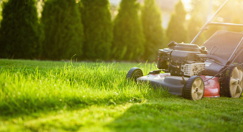 Recommended Lawn Mowing Heights By Season (Spring, Summer, Fall)