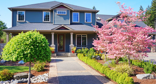 Maximize Your Yard's Curb Appeal to Homebuyers