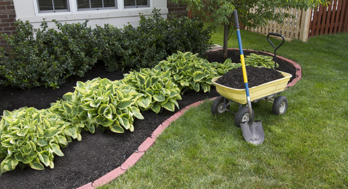 Is Organic Mulch Better for My Trees & Plants? | Davey Blog