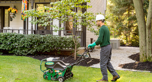 What To Do Before Overseeding My Lawn