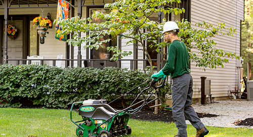 How Often Should I Aerate My Lawn?