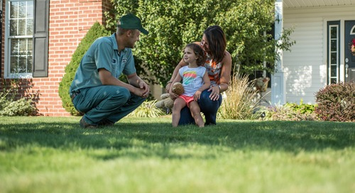 Should I Fertilize My Lawn in the Fall? Yes! Here's Why and How.