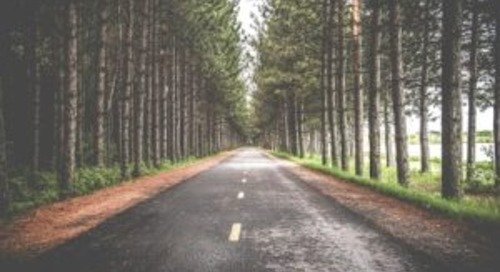 Getting Good Directions on Your Drive to Successful DCIM Implementation