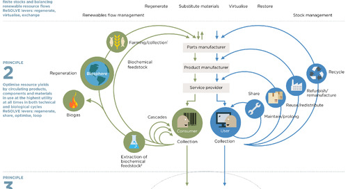 Ellen MacArthur's Good Idea: The Circular Economy
