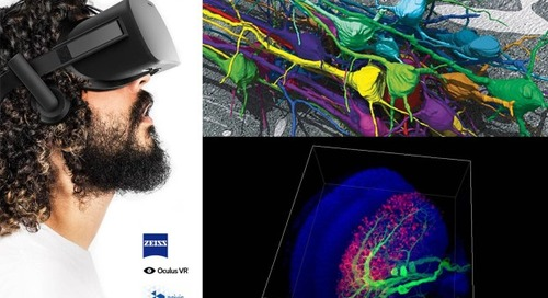 Visit ZEISS at the Neuroscience Meeting in Chicago and Witness the Potential of Virtual Reality!