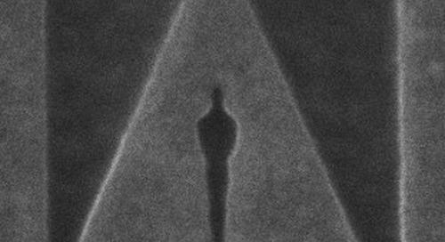AMBER Recognises Oscar Talent on the Nanoscale
