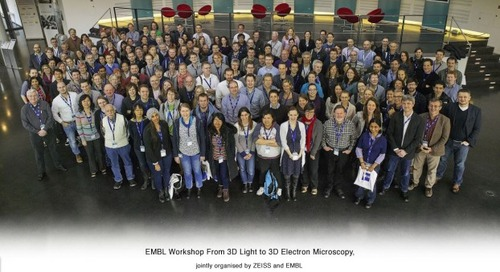 Report from #EMBL3D Conference 'From 3D Light to 3D Electron Microscopy'