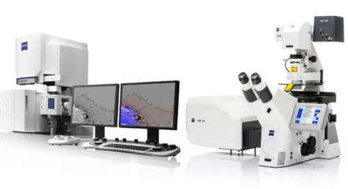 High Resolution 3D Light and Electron Microscopy Analysis of Living Tissue