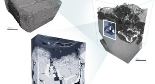 Overcoming Multi-scale Challenges in Materials Science with ZEISS Atlas 5