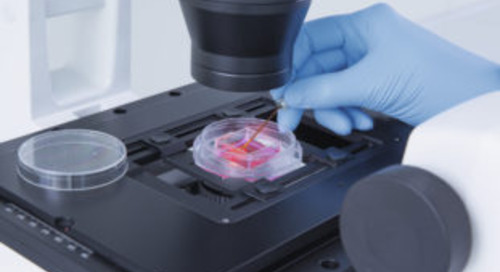 ZEISS and QIAGEN Partner to Provide Affordable Single-cell Isolation