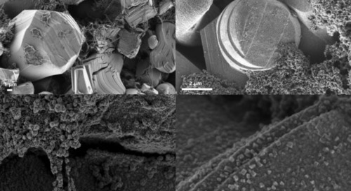 Scanning Electron Microscopy of Lithium-ion Battery Components