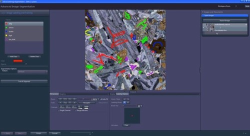 Introducing ZEISS ZEN Intellesis: Machine learning for microscopy