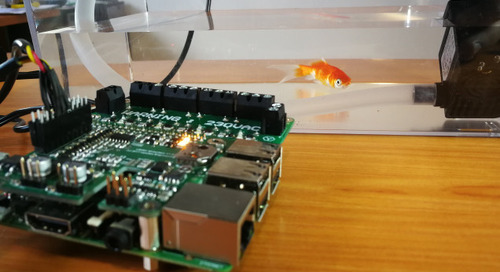 Raspberry Pi I/O Add-On Targets Aquaponics and Hydroponics