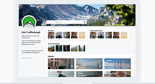 Introducing Media Hub, the Modern Way to Share Visual Content