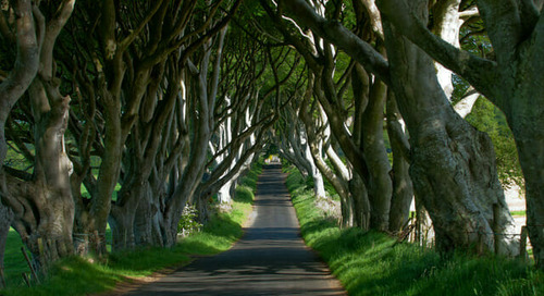 Doors of Thrones: How Northern Ireland Rose into the Travel Limelight with Game of Thrones