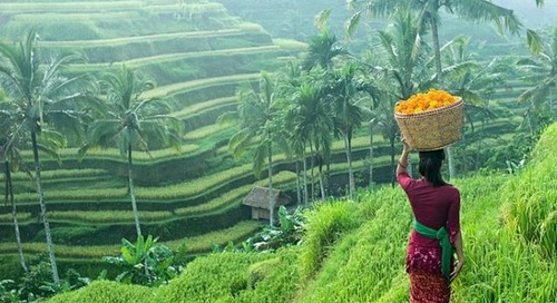 Your guide to Bali's regional 'hoods