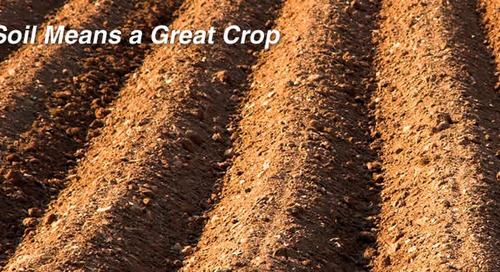 Three Products for Optimal Soil Health