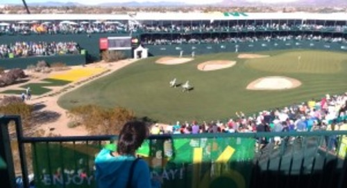 FUN AT THE FAMOUS 16th HOLE; 2013 PHOENIX OPEN