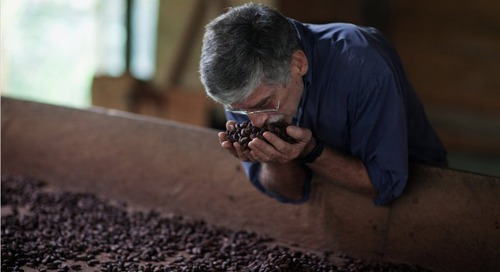 The Other Entrepreneurs: Perfecting Coffee and Chocolate in São Tomé and Príncipe