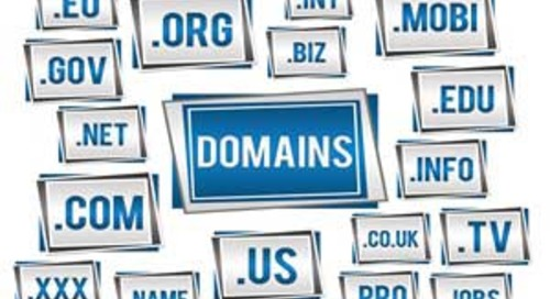 New Internet Domain Extensions: Don't Get Blinded by the Sunrise or Run Over by the Landrush