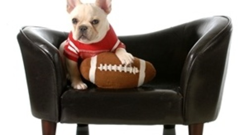 B2B Brands and the Super Bowl: How B2B Marketers Can Capitalize on Consumer Events