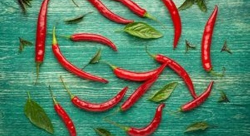 Six Ways to Spice Up Your Marketing Collateral to Quickly Engage Audiences