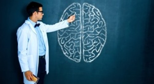 What Neuroscience Can Teach Us About Marketing