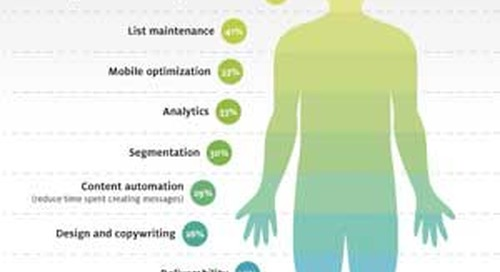 Publishers' Top Email Marketing Pain Points [Infographic]