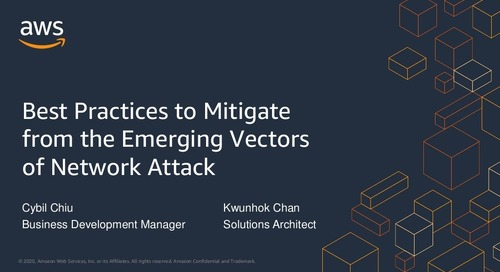 Best Practices to Mitigate from the Emerging Vectors of Network Attack