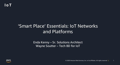 'Smart Place' Essentials: IoT Networks and Platforms