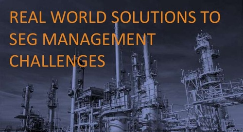 Real World Solutions to SEG Management Challenges