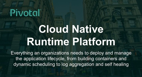 Cloud-Native Runtime Platform