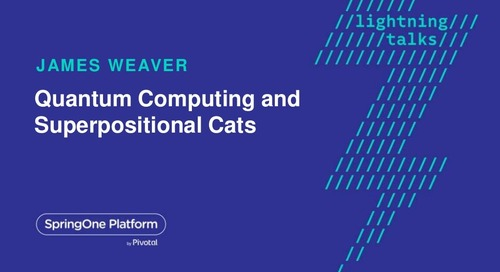 Quantum Computing and Superpositional Cats