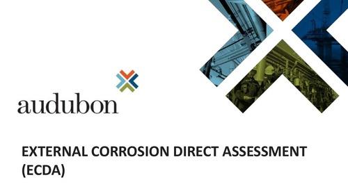 External Corrosion Direct Assessment (ECDA)