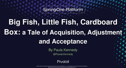 Big Fish, Little Fish, Cardboard Box: a Tale of Acquisition, Adjustment and Acceptance