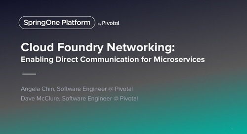 Cloud Foundry Networking: Enabling Direct Communicatitions for Microservices