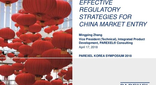 Effective Regulatory Strategies for China Market Entry