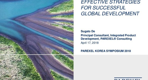 Effective Strategies for Successful Global Development